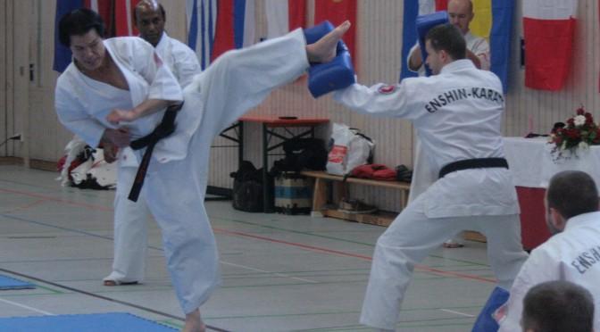 Europäisches Enshin Karate Seminar 2014